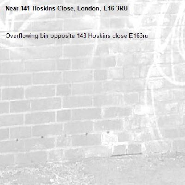 Overflowing bin opposite 143 Hoskins close E163ru  -141 Hoskins Close, London, E16 3RU