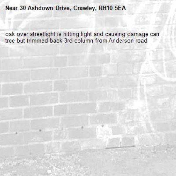 oak over streetlight is hitting light and causing damage can tree but trimmed back 3rd column from Anderson road-30 Ashdown Drive, Crawley, RH10 5EA