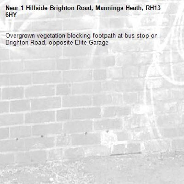 Overgrown vegetation blocking footpath at bus stop on Brighton Road, opposite Elite Garage-1 Hillside Brighton Road, Mannings Heath, RH13 6HY