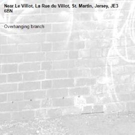 Overhanging branch-Le Villot, La Rue du Villot, St. Martin, Jersey, JE3 6BN