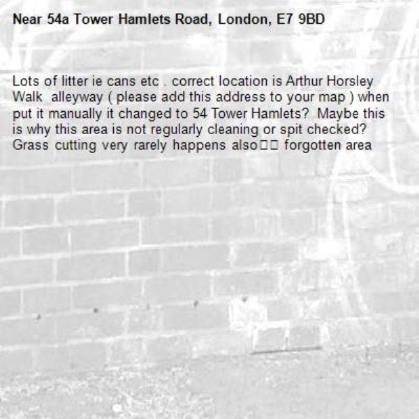Lots of litter ie cans etc . correct location is Arthur Horsley Walk  alleyway ( please add this address to your map ) when put it manually it changed to 54 Tower Hamlets?  Maybe this is why this area is not regularly cleaning or spit checked? Grass cutting very rarely happens also👎🏽 forgotten area-54a Tower Hamlets Road, London, E7 9BD
