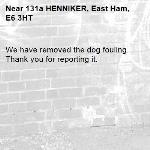 We have removed the dog fouling. Thank you for reporting it.-131a HENNIKER, East Ham, E6 3HT