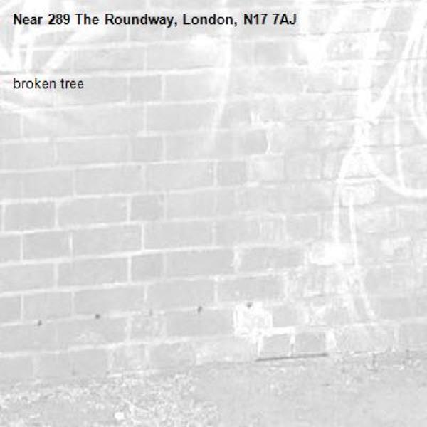 broken tree-289 The Roundway, London, N17 7AJ