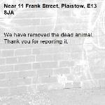 We have removed the dead animal. Thank you for reporting it.-11 Frank Street, Plaistow, E13 8JA