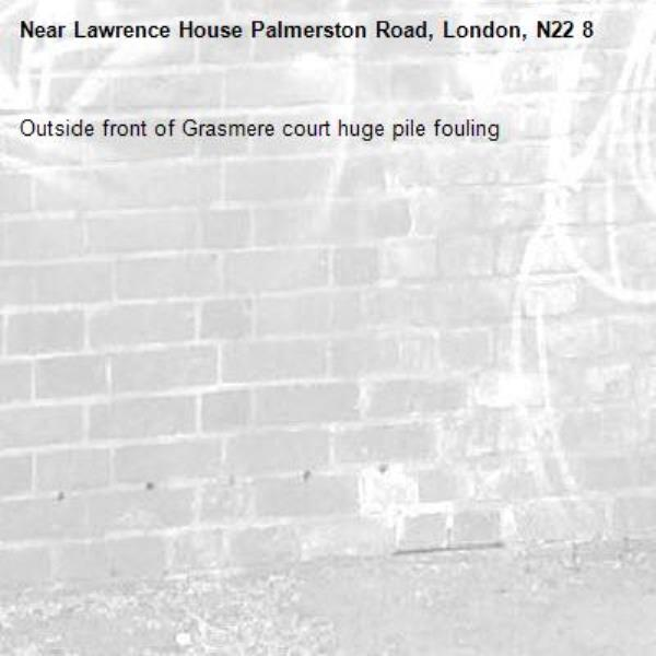 Outside front of Grasmere court huge pile fouling-Lawrence House Palmerston Road, London, N22 8