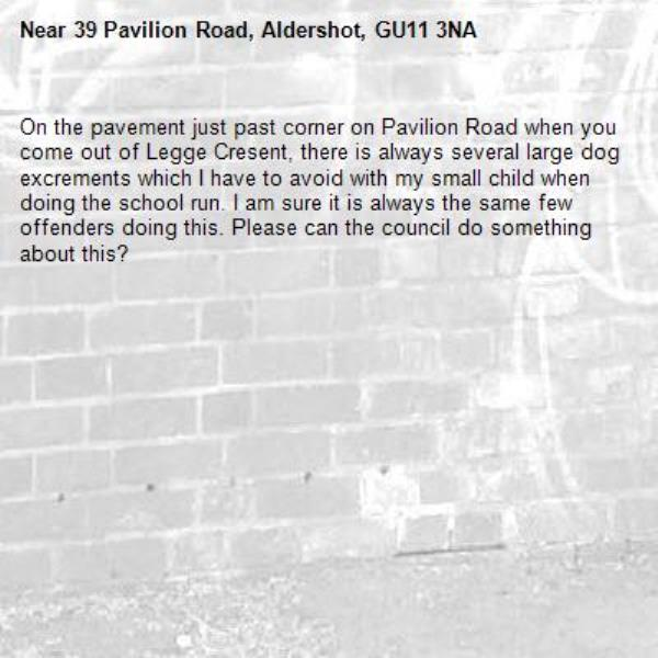 On the pavement just past corner on Pavilion Road when you come out of Legge Cresent, there is always several large dog excrements which I have to avoid with my small child when doing the school run. I am sure it is always the same few offenders doing this. Please can the council do something about this? -39 Pavilion Road, Aldershot, GU11 3NA