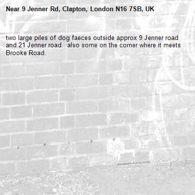 two large piles of dog faeces outside approx 9 Jenner road and 21 Jenner road.  also some on the corner where it meets Brooke Road.-9 Jenner Rd, Clapton, London N16 7SB, UK