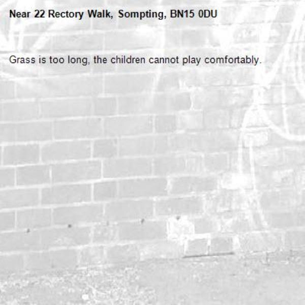 Grass is too long, the children cannot play comfortably.-22 Rectory Walk, Sompting, BN15 0DU