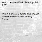 This is a privately owned tree. Please contact the land owner directly. Thanks.-11 Abbots Walk, Reading, RG1 3HW