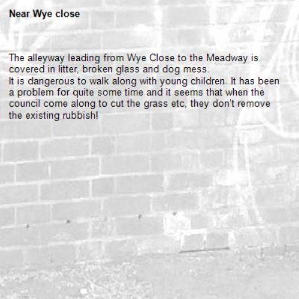 The alleyway leading from Wye Close to the Meadway is covered in litter, broken glass and dog mess. It is dangerous to walk along with young children. It has been a problem for quite some time and it seems that when the council come along to cut the grass etc, they don't remove the existing rubbish! -Wye close