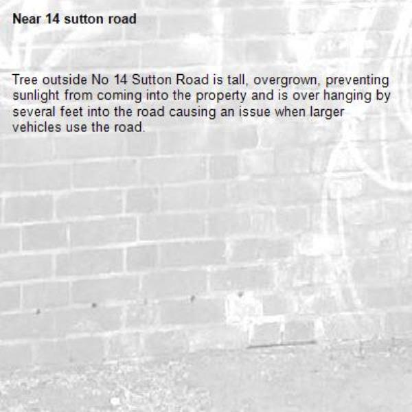 Tree outside No 14 Sutton Road is tall, overgrown, preventing sunlight from coming into the property and is over hanging by several feet into the road causing an issue when larger vehicles use the road.-14 sutton road