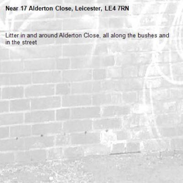 Litter in and around Alderton Close, all along the bushes and in the street-17 Alderton Close, Leicester, LE4 7RN