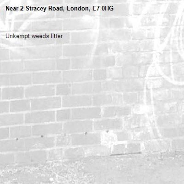 Unkempt weeds litter-2 Stracey Road, London, E7 0HG