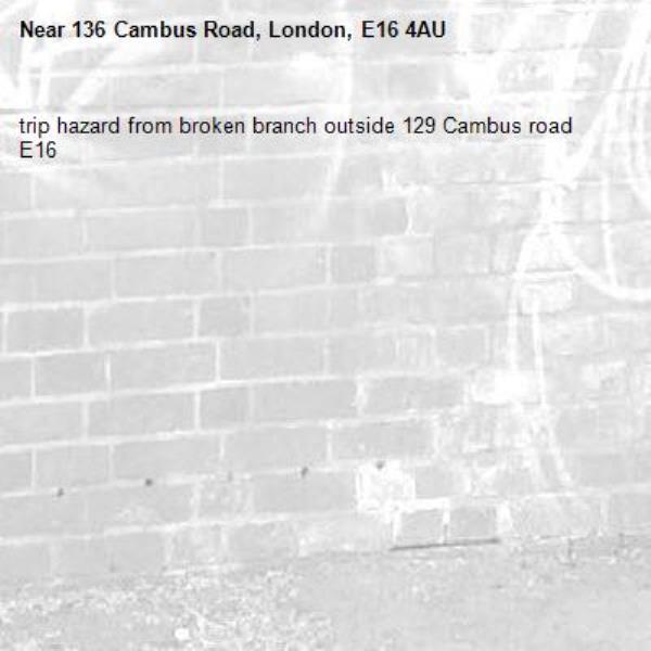 trip hazard from broken branch outside 129 Cambus road E16 -136 Cambus Road, London, E16 4AU