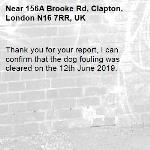 Thank you for your report, I can confirm that the dog fouling was cleared on the 12th June 2019.  -156A Brooke Rd, Clapton, London N16 7RR, UK