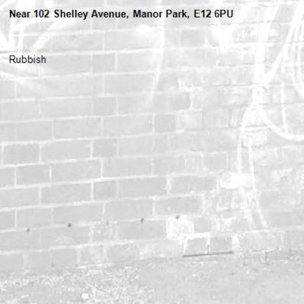Rubbish -102 Shelley Avenue, Manor Park, E12 6PU