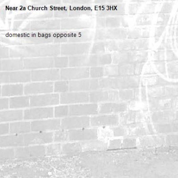domestic in bags opposite 5-2a Church Street, London, E15 3HX