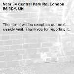 The street will be swept on our next weekly visit. Thankyou for reporting it.-34 Central Park Rd, London E6 3DY, UK