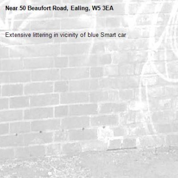 Extensive littering in vicinity of blue Smart car-50 Beaufort Road, Ealing, W5 3EA