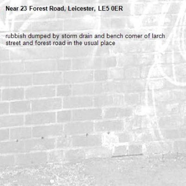rubbish dumped by storm drain and bench corner of larch street and forest road in the usual place-23 Forest Road, Leicester, LE5 0ER