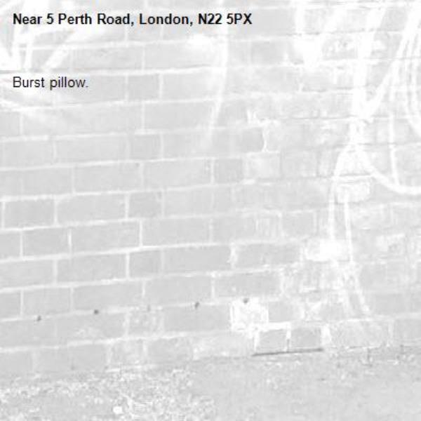 Burst pillow.-5 Perth Road, London, N22 5PX