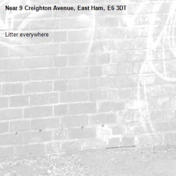 Litter everywhere -9 Creighton Avenue, East Ham, E6 3DT