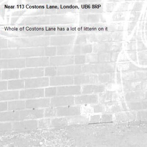 Whole of Costons Lane has a lot of litterin on it-113 Costons Lane, London, UB6 8RP