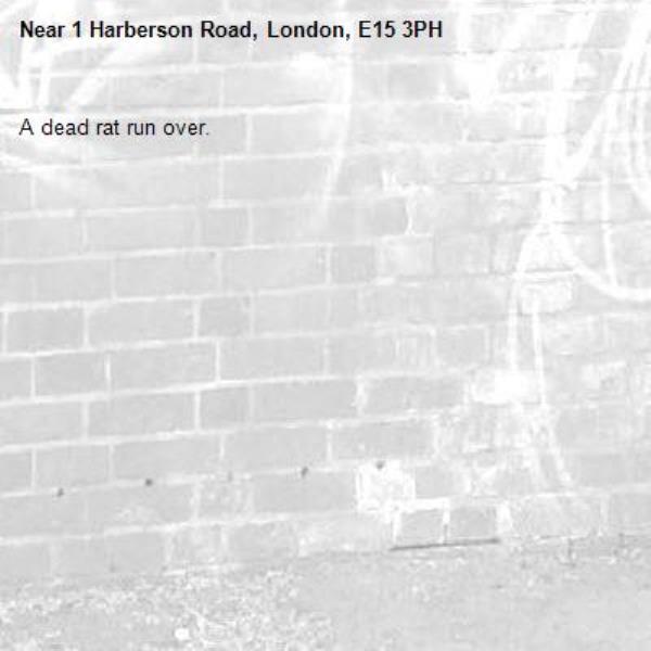 A dead rat run over. -1 Harberson Road, London, E15 3PH