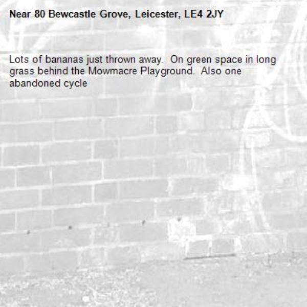 Lots of bananas just thrown away.  On green space in long grass behind the Mowmacre Playground.  Also one abandoned cycle -80 Bewcastle Grove, Leicester, LE4 2JY