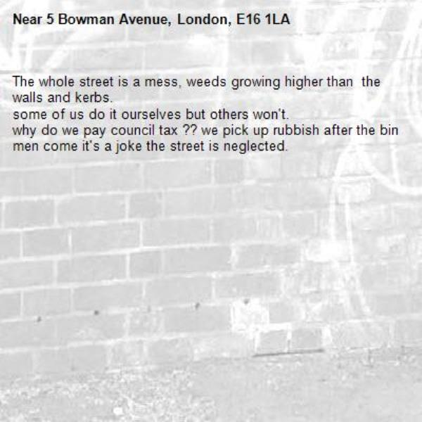 The whole street is a mess, weeds growing higher than  the walls and kerbs. some of us do it ourselves but others won't. why do we pay council tax ?? we pick up rubbish after the bin men come it's a joke the street is neglected. -5 Bowman Avenue, London, E16 1LA