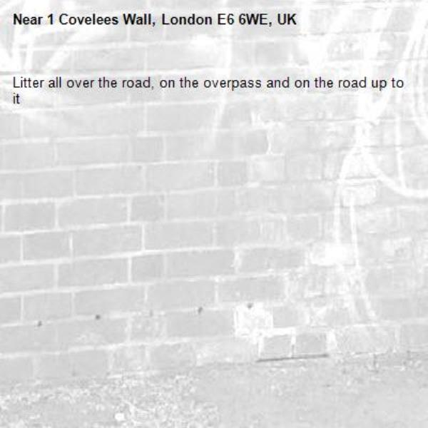 Litter all over the road, on the overpass and on the road up to it-1 Covelees Wall, London E6 6WE, UK