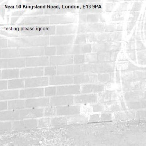 testing please ignore-50 Kingsland Road, London, E13 9PA
