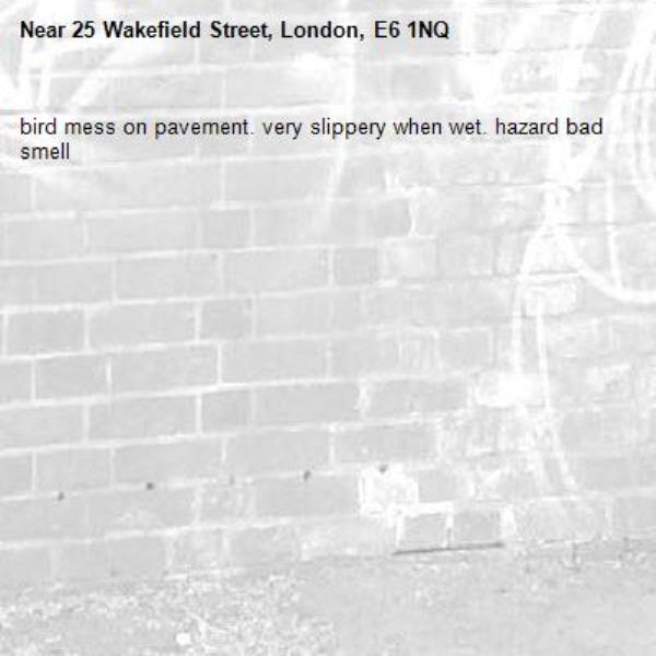 bird mess on pavement. very slippery when wet. hazard bad smell-25 Wakefield Street, London, E6 1NQ