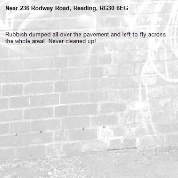 Rubbish dumped all over the pavement and left to fly across the whole area!  Never cleaned up!-236 Rodway Road, Reading, RG30 6EG