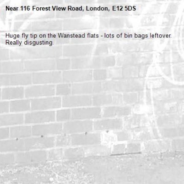 Huge fly tip on the Wanstead flats - lots of bin bags leftover. Really disgusting. -116 Forest View Road, London, E12 5DS