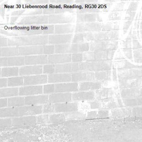 Overflowing litter bin -30 Liebenrood Road, Reading, RG30 2DS