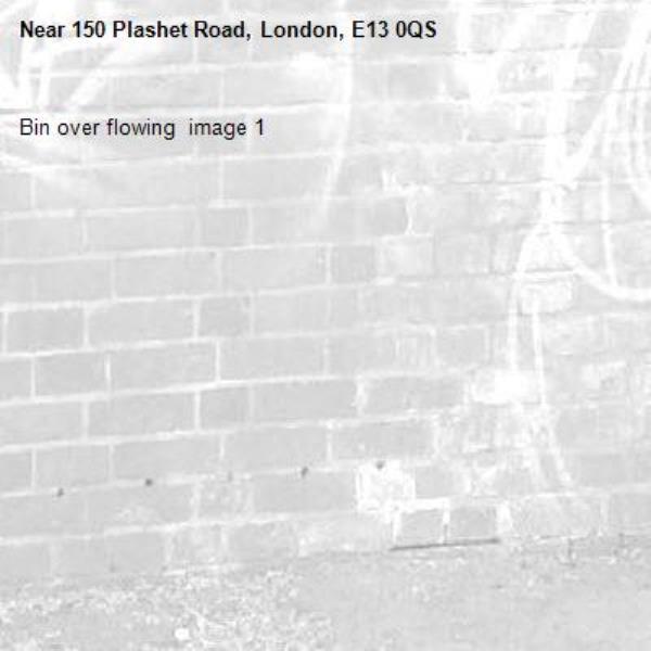 Bin over flowing  image 1-150 Plashet Road, London, E13 0QS