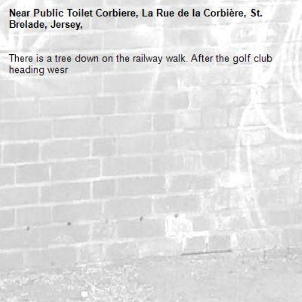 There is a tree down on the railway walk. After the golf club heading wesr-Public Toilet Corbiere, La Rue de la Corbière, St. Brelade, Jersey,