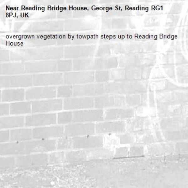 overgrown vegetation by towpath steps up to Reading Bridge House-Reading Bridge House, George St, Reading RG1 8PJ, UK
