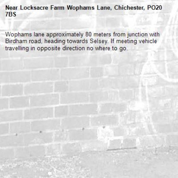 Wophams lane approximately 80 meters from junction with Birdham road, heading towards Selsey. If meeting vehicle travelling in opposite direction no where to go.-Locksacre Farm Wophams Lane, Chichester, PO20 7BS