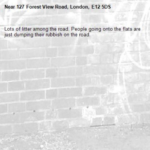 Lots of litter among the road. People going onto the flats are just dumping their rubbish on the road. -127 Forest View Road, London, E12 5DS