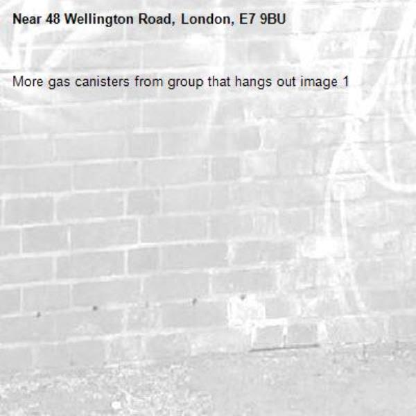 More gas canisters from group that hangs out image 1-48 Wellington Road, London, E7 9BU