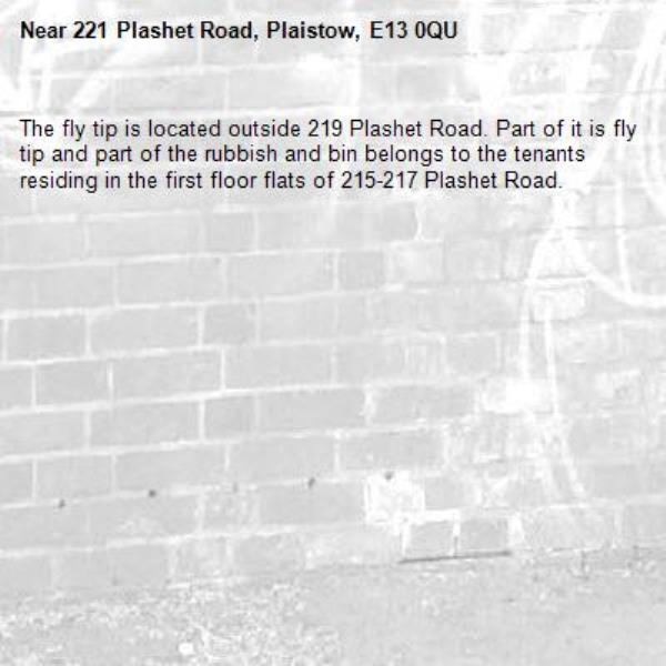 The fly tip is located outside 219 Plashet Road. Part of it is fly tip and part of the rubbish and bin belongs to the tenants residing in the first floor flats of 215-217 Plashet Road. -221 Plashet Road, Plaistow, E13 0QU