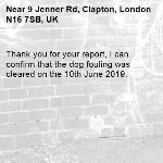Thank you for your report, I can confirm that the dog fouling was cleared on the 10th June 2019.