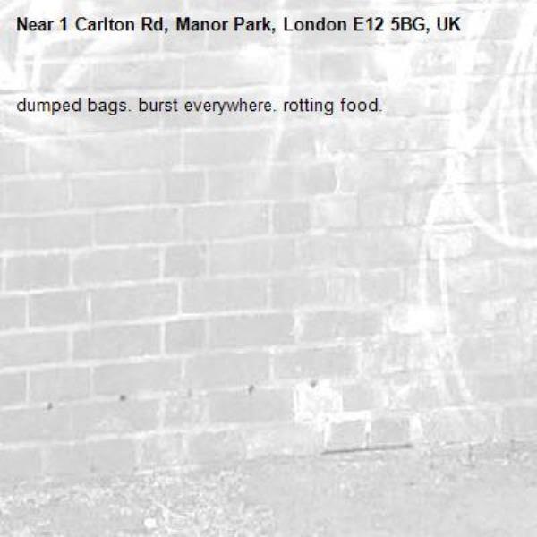 dumped bags. burst everywhere. rotting food. -1 Carlton Rd, Manor Park, London E12 5BG, UK