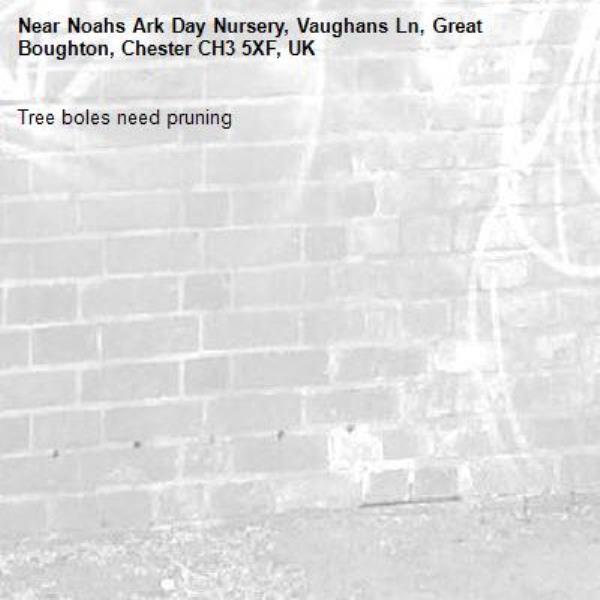 Tree boles need pruning-Noahs Ark Day Nursery, Vaughans Ln, Great Boughton, Chester CH3 5XF, UK