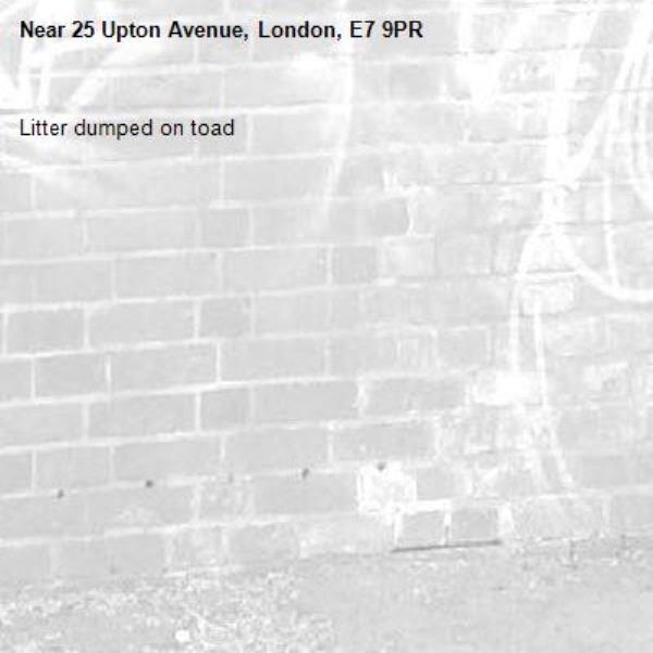 Litter dumped on toad-25 Upton Avenue, London, E7 9PR