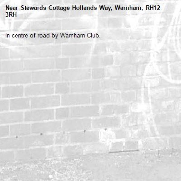 In centre of road by Warnham Club.-Stewards Cottage Hollands Way, Warnham, RH12 3RH