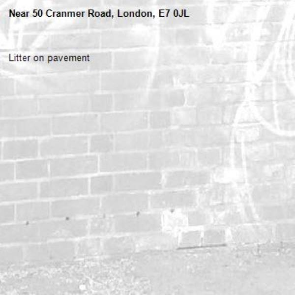 Litter on pavement-50 Cranmer Road, London, E7 0JL