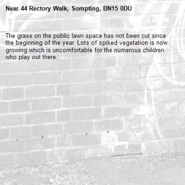 The grass on the public lawn space has not been cut since the beginning of the year. Lots of spiked vegetation is now growing which is uncomfortable for the numerous children who play out there. -44 Rectory Walk, Sompting, BN15 0DU